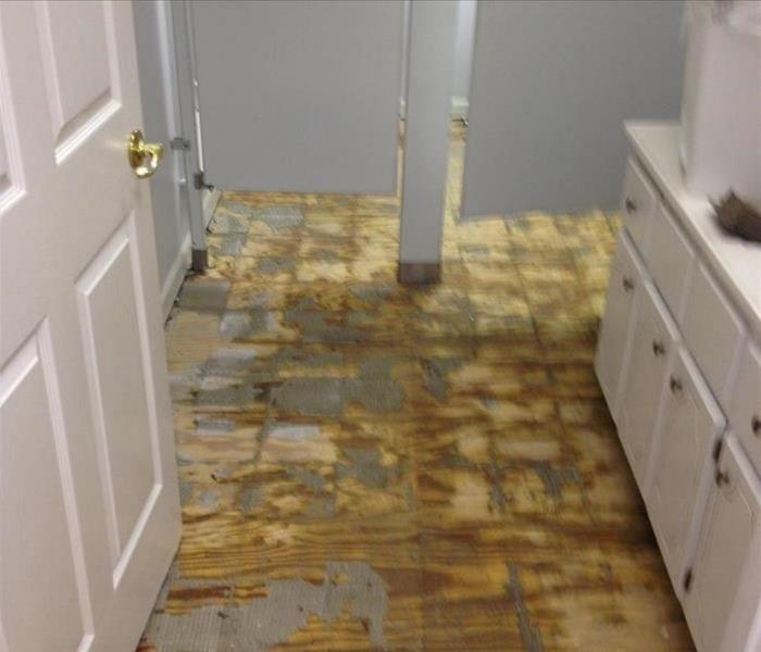 Flood damage cockeysville commercial facility servpro for Bathroom flooded wet carpet