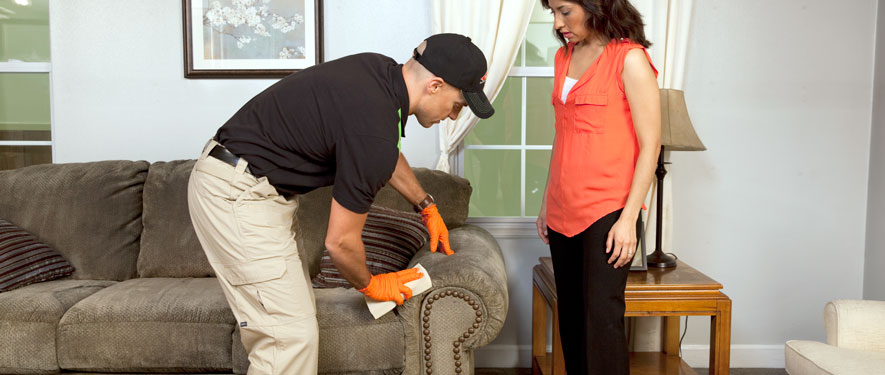Towson North, MD carpet upholstery cleaning