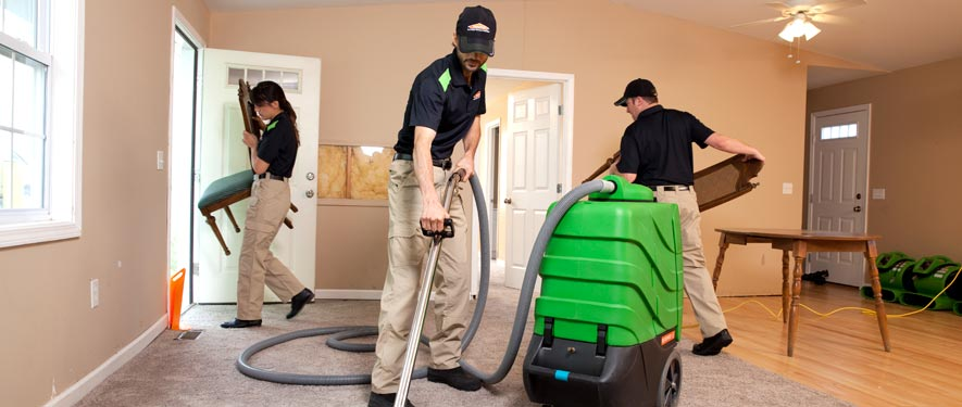 Towson North, MD cleaning services